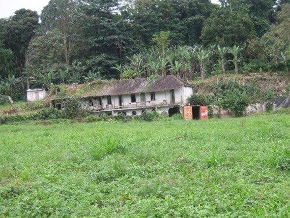 DSCN1358 roça bombaim em são tomé Até à Roça Bombaim em São Tomé DSCN1358 590x443