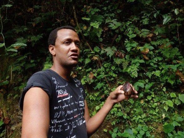 P9180021 roça bombaim em são tomé Até à Roça Bombaim em São Tomé P9180021 590x443