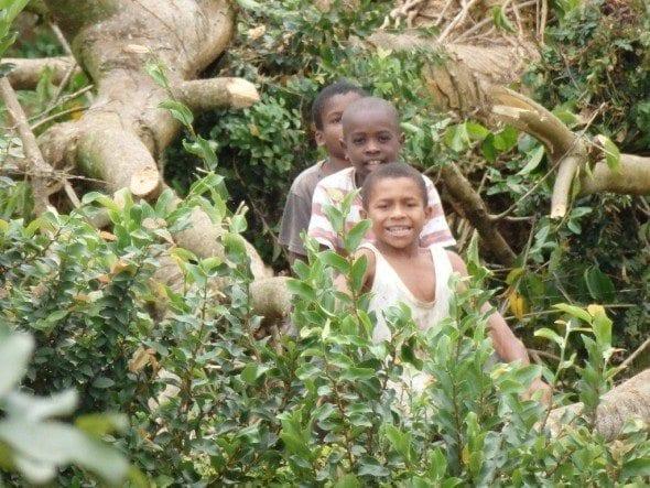P9180052 roça bombaim em são tomé Até à Roça Bombaim em São Tomé P9180052 590x443